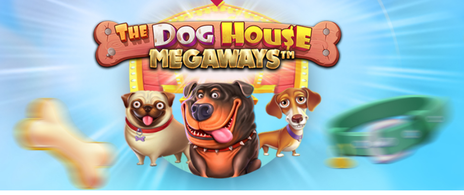winningroom_the_dog_house_megaways